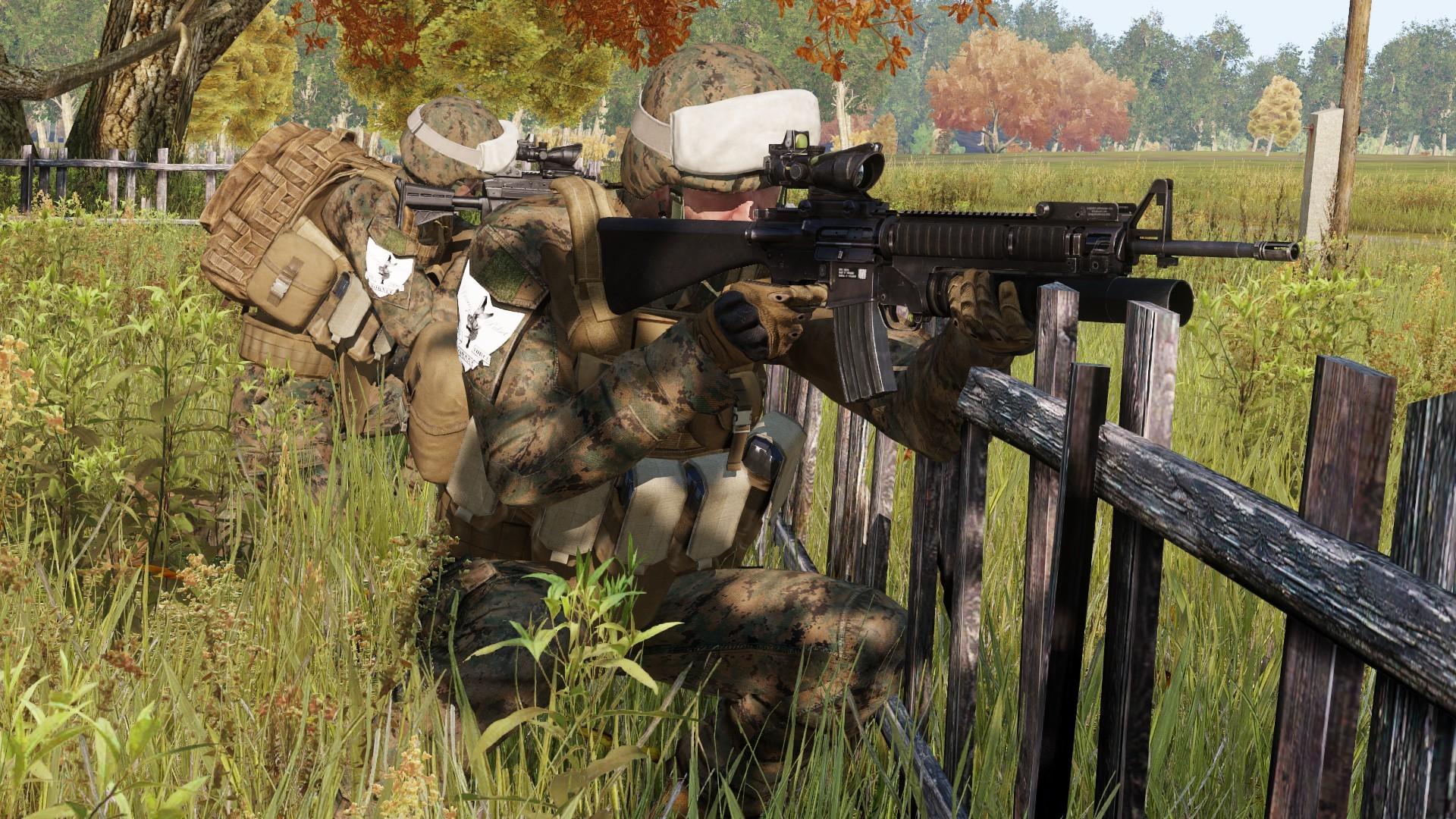 Task Force Hornet